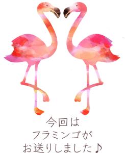 新宿ヒロクリニック推進部スタッフブログ